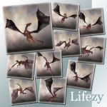 Lifezy: Poses of Millennium Dragon 2: Pack #2