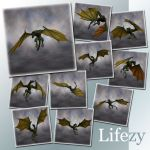 Lifezy: Poses of Wyvern2: Pack #3