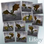 Lifezy: Poses of Wyvern2: Pack #4