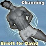 !Channing's Briefs for David