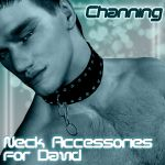 !Channing's Neck Accessories for David