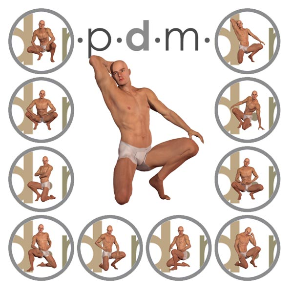 PDM: V4Male Poses 2